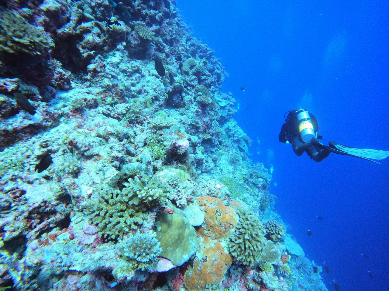 The_Residence_Maldives_Diving_1